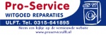 Pro-service Ulft.jpg