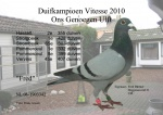 Duifk-42-2010-a.jpg